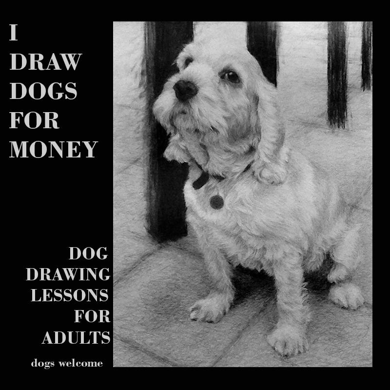 A F Dog drawing class